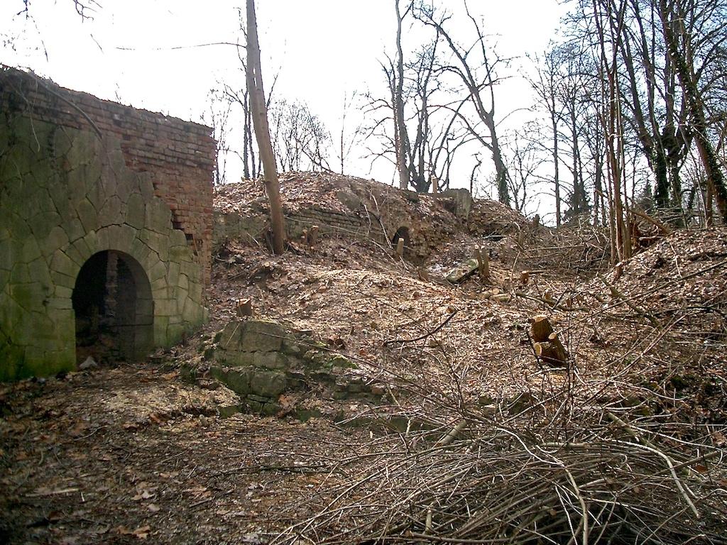 Ruine Villa Jacobs 2005